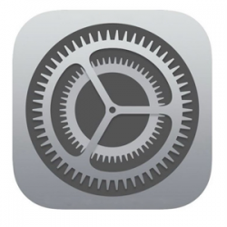 Apple iOS settings icon