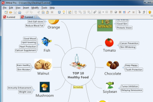 A mindmap showing Top 10 healthy foods with examples